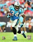 DeAngelo Williams Carolina Panthers 2014 NFL Action Photo RJ209 (Select Size)