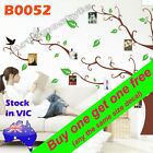 B0052 Reusable Large 1.7m Photo Tree Wall Decal Sticker Office School Home Decor
