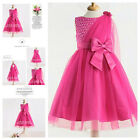 Girl Christmas Wedding Party Flowers Girls Dresses SIZE 2-3-4-5-6-7-8-9-10-12T