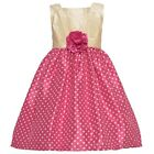 Mia Juliana Little Girls Ivory Fuchsia Polka Dotted Flower Shantung Dress 4-6X