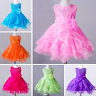 Girls Toddler Baby Dress Flower Girl Princess Wedding Pageant Party Tutu Dresses