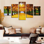 5Pcs Modern Abstract Huge Wall Home Decor Art Oil Painting On Canvas No Frame B