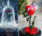 The Beauty And The Beast Rose Preserved Flower Eternal Rose Prince Princess Gift
