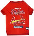 St. Louis Cardinals MLB Pet Dog TEE shirt (sizes)