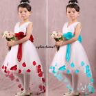 Baby Princess Flower Girls Wedding Party #C Prom Pageant Tulle Fancy Gown Dress