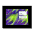 ANIMAL COLLECTIVE - Merriweather Post Pavilion Mini ...
