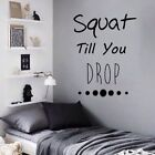 Motivational Fitness Gym Quote wall vinyl decals stickers Art Deco