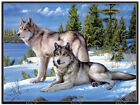 Wolves - 3D Lenticular - 3 Images of Wolf in One Poster 3D Print - 12x16