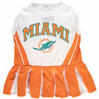 miami dolphin cheerleaders - Miami Dolphins Cheerleader Pet Outfit
