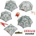 Kyпить Fishing Bait Trap Crab Net Crawdad Shrimp Cast Dip Cage Fish Minow Foldable NEW на еВаy.соm