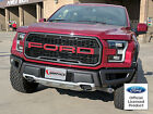 FORD RAPTOR GRILLE INSERT GRAPHICS STICKERS DECALS 2017 2018 2019 VINYL LETTERS