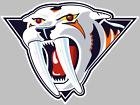 Nashville Predators Decal Sticker Choose Size 3M air release BUY 3 GET 1 FREE $29.95 USD on eBay