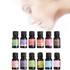10ml Natural Water Solubility Pure Essential Oil Therapeutic Plant Aromatic San