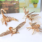 3D Wooden Insect Model Puzzles DIY Assembly Crafts Education Kids Toy