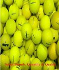 48 Mint Yellow Assorted Mix, Top Flite or Pinnacle Rush AAAAA Used Golf Balls