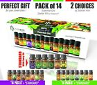Create A Set Of 6 Essential Oils By Holypure (5ml) Only $11.99 (PROMOTIONAL)