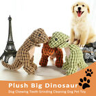 Tool Pet Supplies Cat Plush Dinosaur Bite Toy Molars Toothbrush Dog Chew Toys