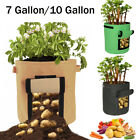 7 10 Gallon Garden Planting Grow Bag Flower Potato Fabric Planting Pot Container