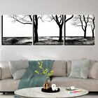 Black and White Tree Branch 3 Pcs Canvas Printed Wall Poster Picture Home Decor