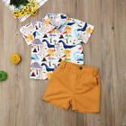 Newborn Baby Kids Boys Summer Beach Dinosaur Tops T-shirt Shorts Pants Outfits
