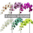 11 Head Diy Artificial Fake Silk Flower Phalaenopsis Butterfly Orchid Home Decor