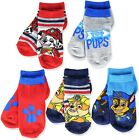 PAW PATROL CHASE  MARSHALL 5-Pack Low Cut Socks Boys Ages 1-3 Shoe Size 4-8