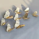 3d Hollow Butterfly Art Decal Home Decor Diy Party Wall Stickers Decor Sg