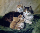 CAT KITTEN CONTENTMENT PAINTING BY HENRIETTE RONNER KNIP REPRO