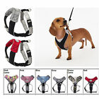 DOGGLES V Mesh Comfort Dog Harness XXS XS SMALL MEDIUM All Colors NEW
