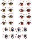 Ceramic Decals Human Eyes/Eyebrows  Blue Brown Green image