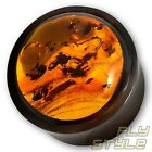 6-22mm BERNSTEIN HORN OHR PLUG PIERCING SCHMUCK ORGANIC EAR FLESH TUNNEL AMBER
