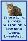Cats image no.1 - Funny cat sayings - New - Slap-on Fridge magnets
