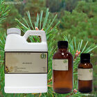 Pine Essential Oil (100% Pure & Natural) SHIPS FREE