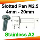 M2.5 Stainless A2 Slotted Pan Head Machine Screws
