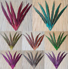 Free shipp 10pcs Pheasant tail feathers 30-35cm/12-14 inch 8 color optional/Y01