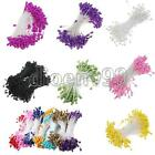 320pc Artificial Flower Stamen Double Tip Pearlized Craft Cards Cakes Decoration