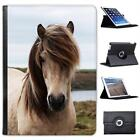 Dirty White Horse Folio Wallet Leather Case For iPad Air & Air 2