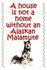 Alaskan Malamute Dog fridge magnet - flexible Dog fridge magnets New Gift
