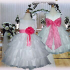 USMD75 White Hot Pink Christmas Dance bridesmaid Flower Girl Dress Age 1 to 14