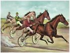 8958.Horses pulling on two wheeled bicycles.POSTER.decor Home Office art