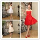 New Women Lady Chiffon Formal Wedding Bridesmaid Prom Ball Evening Short Dress