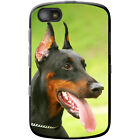 Doberman Pinscher Dog Hard Case For Blackberry Models