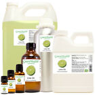 Lime Essential Oil 100% Pure Many Sizes Free Shipping