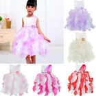 Girl Kids Flower Princess Formal Pageant Wedding Bridesmaid Party Tutu Dress 2-8