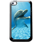 Dolphins Hard Case For iPod Touch 4th Gen