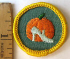 Girl Scout 1963-80 Cadette GOOD GROOMING BADGE Pumpkin Slipper Patch CHOOSE YEAR