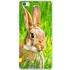 Bunny Rabbits Hard Case For Huawei P8 Lite