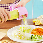 Kitchen Vegetable Fruit Shred Twister Cutter Spiral Slicer Peeler Garnish Tool Q