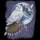 Southwestern Snow Owl Moon  Tshirt   Sizes/Colors