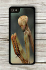 INSECT LIFE CLOSE UP FACE BROWN PRAYING MANTIS CASE FOR iPHONE 4 5 5C 6 -slO9Z